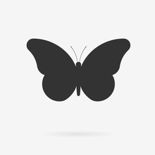 Vector Butterfly Icon. Clean M...