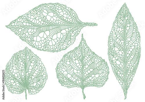 Obraz green vein leaves, vector set - fototapety do salonu