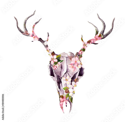Poster Crâne aquarelle Deer animal skull in flowers. Watercolor