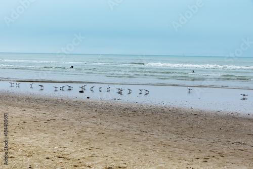 Foto op Aluminium Inspirerende boodschap Rimini beach in winter