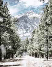 Winter Road To Humphrey's Peak In Flagstaff Arizona