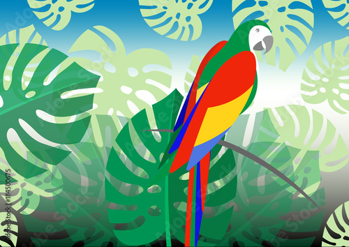 Foto op Canvas Draw parrot whit floral summer pattern background, vector for wallpapers, web page backgrounds, surface textures, textile.