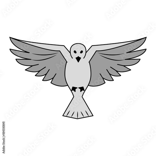Canvas Prints Owls cartoon Dove bird symbol