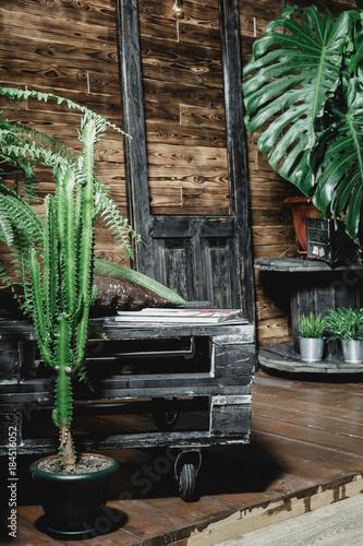 Fototapeta Plants in a house hall obraz na płótnie