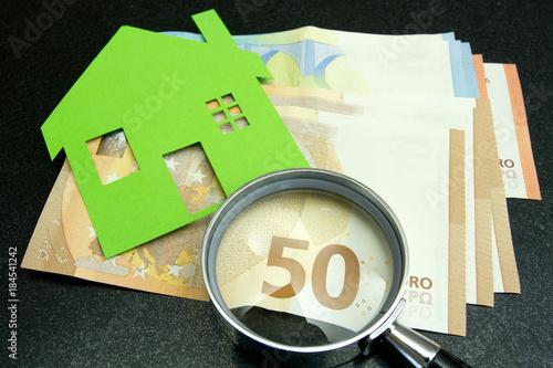 Fotografia, Obraz  maison et argent
