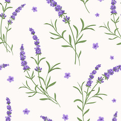 Panel Szklany Lawenda Vector lavender seamless pattern. Beautiful and elegant lavender flowers background