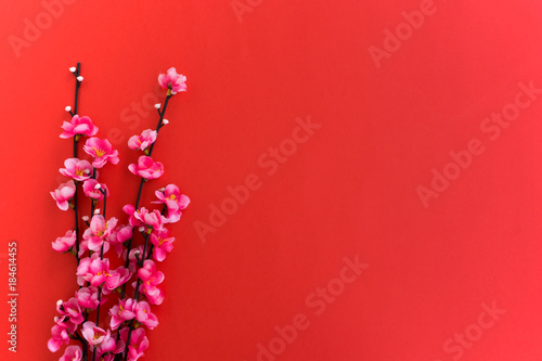 chinese new year background plum flowers on red background