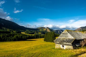 Ländliche Landschaft mit Bergen in Österreich
