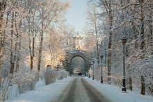 Winter Day In Alexander Park