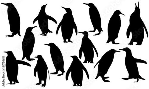 Cuadros en Lienzo a collection of silhouette penguins