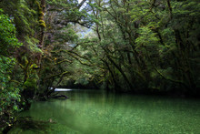 Clinton River On The Milford Track, Great Walk Of New Zealand