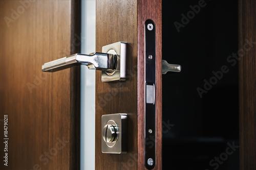 door handle and latch of brass on veneer doors Canvas Print
