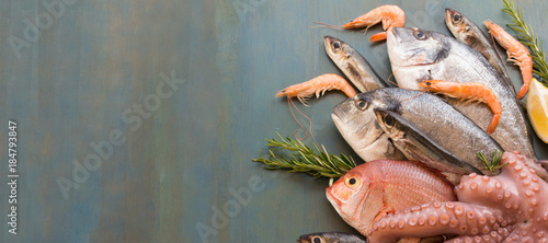 Fresh fish and seafood lay on blue background with copy space. Fototapet