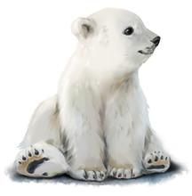 Cub Polar Bear Watercolor Pain...