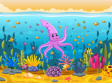 Cute Squid Under The Sea