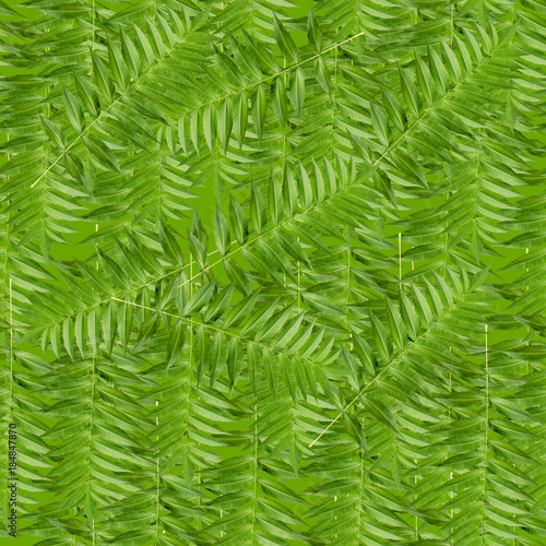 Recess Fitting Tropical leaves Seamless pattern with green leaves