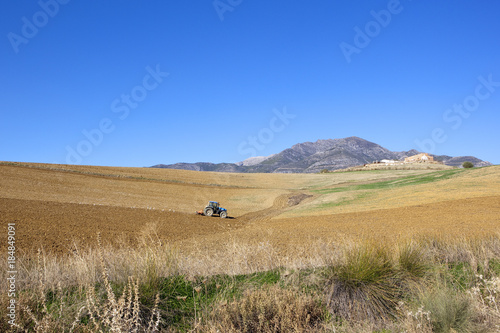 Spoed Foto op Canvas Natuur spanish agriculture