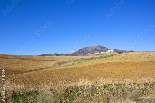 Spoed Foto op Canvas Natuur mountains and arable fields