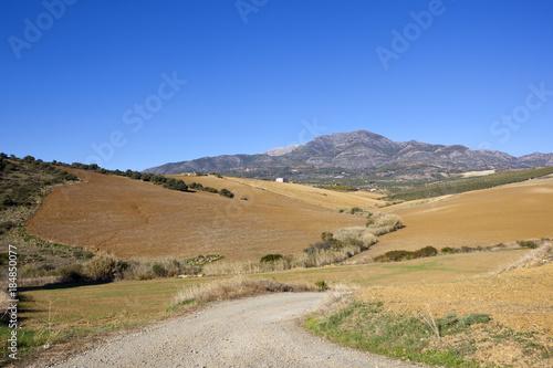 Spoed Foto op Canvas Natuur andalucian farming scenery