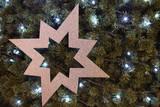 Fototapeta Do akwarium - The Bethlehem star is a sign of the coming Christmas.