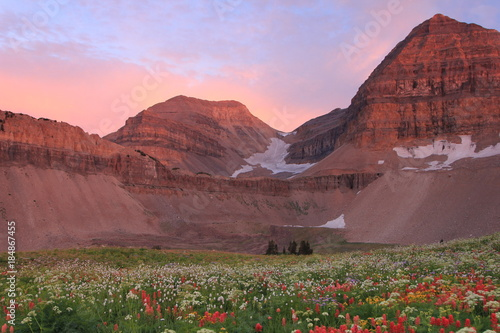 Papiers peints Rose clair / pale Summer sunset on Mount Timpanogos, Utah, USA.