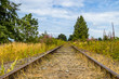 Railway through the meadow stretches to the horizon