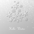 Snowing and snowflakes with shadow and text : Hello Winter, on light background. Vector illustration