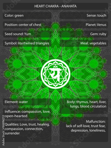 Photo  Chakras symbols with meanings infographic