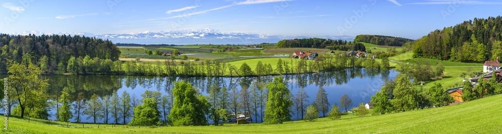 Fototapeta der herrlich gelegene Schleinsee nahe Kressbronn am Bodensee