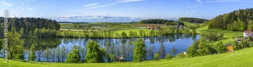 Fototapeta der herrlich gelegene Schleinsee nahe Kressbronn am Bodensee obraz