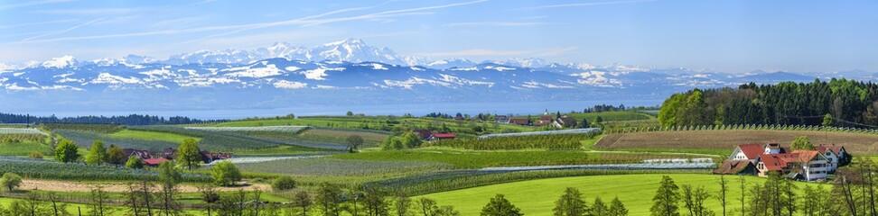 Obstanbau am östlichen Bodensee