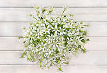 Bouquet Beautiful White Snowdr...