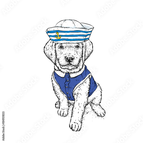 piekny-pies-w-strojach-marynarskich-ilustracji-wektorowych-zwierze-w-ubraniach-i-akcesoriach-marynarz-w-czapce-i-krawacie-szczeniak-rasowy