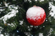 Snow-white ball on Christmas tree