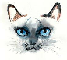 Watercolor Sketch Of A Blue Ey...