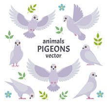 Pigeons Collection. Vector Ill...