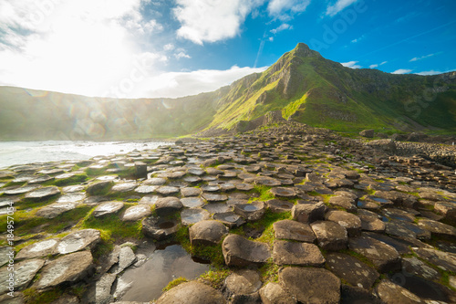 Foto op Canvas Bleke violet The Giant's Causeway at dawn on a sunny day with the famous basalt columns, the result of an ancient volcanic eruption. County Antrim on the north coast of Northern Ireland, UK
