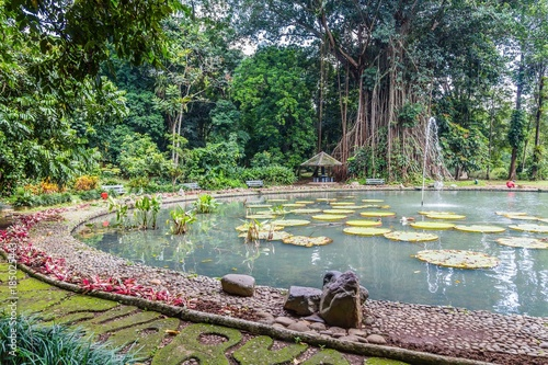 Botanical gardens Kebun Raya in Bogor, West Java, Indonesia - Buy ...