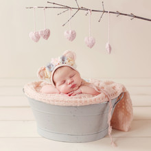 Sleeping Newborn In The Basket...