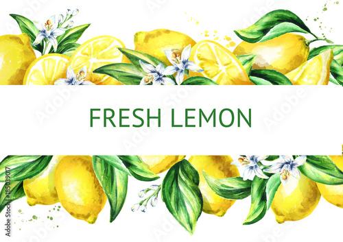 Fresh lemon horizontal illusrtation. Watercolor hand drawn background