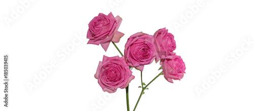 Deurstickers Waterlelies Rosen bouquet isoliert auf weiss