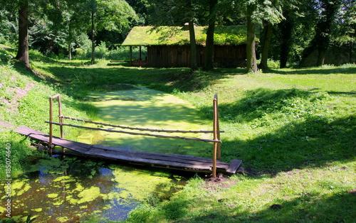 Fototapeta Leśny domek w bajkowym zielonym lesie z kładką przez zielony strumyk obraz