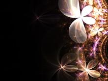 Gold And Pink Fractal Flowers, Digital Artwork For Creative Graphic Design