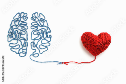 Fotografie, Tablou Heart and brain connected by a knot on a white background