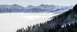 Zalesiony stok i pasmo górskie w nisko leżącej dolinie mgły z sylwetkami wiecznie zielonych drzew iglastych spowitych mgłą. Sceniczny śnieżny zima krajobraz w Alps, Bavaria, Niemcy. - 185093801