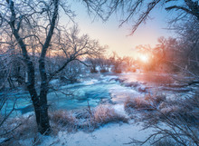Winter Forest With Amazing Riv...