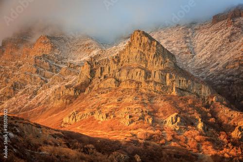 Golden winter sunlight with frost, Utah, USA.