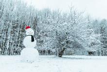 Snow Man In City Park