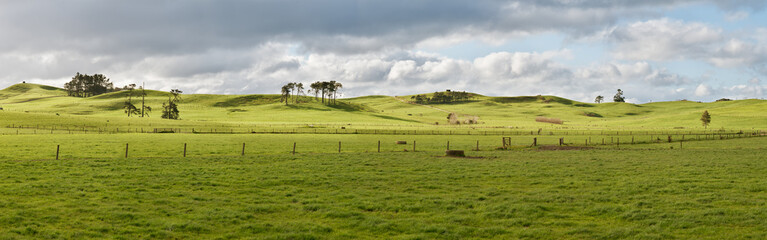 Farm in New Zealand