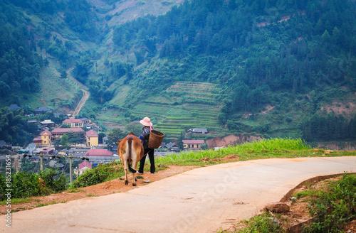 Fotografie, Obraz  People walking on mountain road
